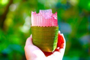 Membuat Gelas Dari Rumput Laut Dan Kurangi Sampah